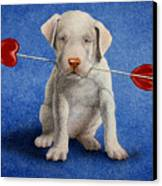 Puppy Lover... Canvas Print by Will Bullas
