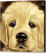 Puppy Canvas Print by Veronica Minozzi