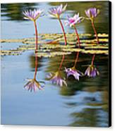 Purple Lillies Canvas Print by Peter Tellone