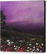 Purple Meadow Canvas Print by Anastasiya Malakhova