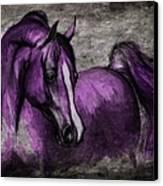 Purple One Canvas Print by Angel  Tarantella