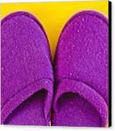 Purple Slippers Canvas Print by Tom Gowanlock