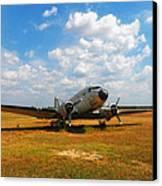 Put Out To Pasture Canvas Print by Mountain Dreams