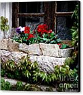 Quaint Stone Planter Canvas Print by Lainie Wrightson