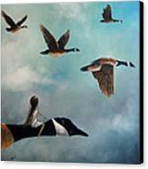 Queen Of The Canada Geese By Shawna Erback Canvas Print by Shawna Erback