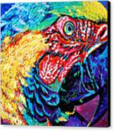 Rainbow Macaw Canvas Print by Maria Arango