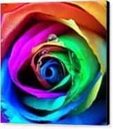 Rainbow Rose Canvas Print by Juergen Weiss