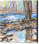 Ralph Stover Park In The Spring Canvas Print by Patricia Allingham Carlson