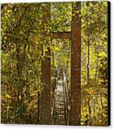 Ravine Gardens State Park In Palatka Fl Canvas Print by Christine Till