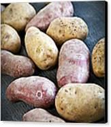 Raw Potatoes Canvas Print by Elena Elisseeva