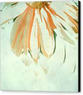 Reconstructed Flower No.1 Canvas Print by Bonnie Bruno