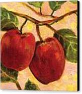 Red Apples On A Branch Canvas Print by Jen Norton