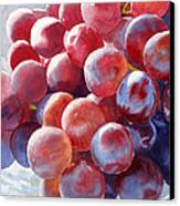 Red Grape Essence Canvas Print by Sharon Freeman