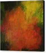 Red Haze Canvas Print by Jim Ellis