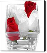 Red Versus White Roses Canvas Print by Andee Design