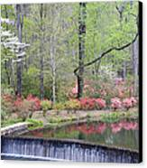 Reflections Canvas Print by Eggers   Photography