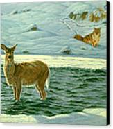 Refuge Canvas Print by Paul Krapf