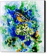 Reina Mora Canvas Print by Zaira Dzhaubaeva