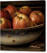 Remembering Autumn Canvas Print by Amy Weiss