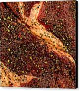 Rib Eye Candy Canvas Print by James Temple