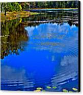 Ripples On Fly Pond - Old Forge New York Canvas Print by David Patterson