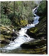 Roaring Fork Falls - Spring 2013 Canvas Print by Joel Deutsch