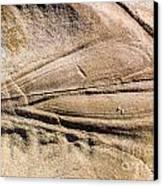 Rock Patterns Canvas Print by Steven Ralser