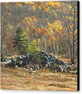 Rock Pile In Maine Blueberry Field Canvas Print by Keith Webber Jr