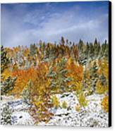 Rocky Mountain Autumn Storm Canvas Print by James BO  Insogna
