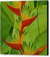 Rojo Sobre Verde Canvas Print by Diane Cutter