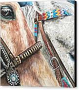 Roping Horses Canvas Print by Nadi Spencer