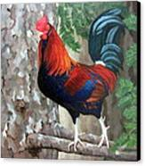 Roscoe The Rooster Canvas Print by Sandra Chase