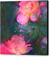 Rose 194 Canvas Print by Pamela Cooper