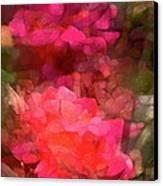 Rose 198 Canvas Print by Pamela Cooper