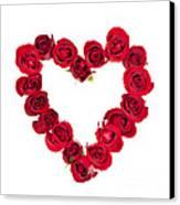 Rose Heart Canvas Print by Elena Elisseeva