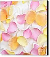 Rose Petals Background Canvas Print by Elena Elisseeva