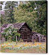 Rustic Cabin In The Mountains Canvas Print by Athena Mckinzie