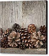 Rustic Wood With Pine Cones Canvas Print by Elena Elisseeva