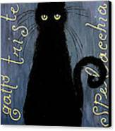 Sad And Ruffled Cat Canvas Print by Donatella Muggianu