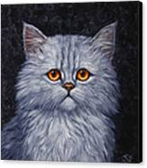 Sad Kitty Canvas Print by Crista Forest