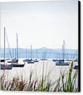Sailboats At Rest Canvas Print by Bill Cannon