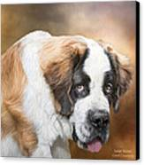 Saint Bernie Canvas Print by Carol Cavalaris