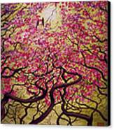 Sakura Canvas Print by Vrindavan Das