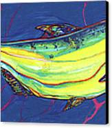 Salmon Of Knowledge Canvas Print by Derrick Higgins