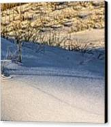 Sand Dunes Of Navarre Canvas Print by JC Findley