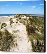 Sand Dunes Separation Canvas Print by Sami Sarkis