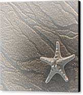 Sand Prints And Starfish II Canvas Print by Susan Candelario