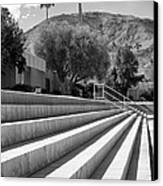 Sandpiper Stairs Bw Palm Desert Canvas Print by William Dey