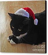 Santa Kitty Canvas Print by Cheryl Young