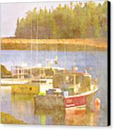 Schoodic Peninsula Maine Canvas Print by Carol Leigh